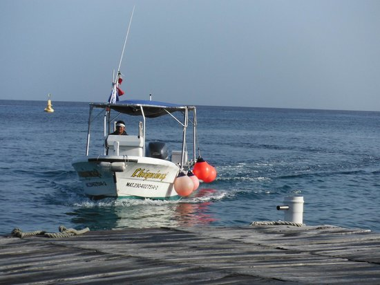 Blue Angel Resort: Fast dive boats with great captains