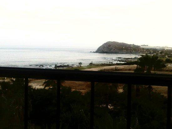 Hacienda del Mar Los Cabos: View from my lounger
