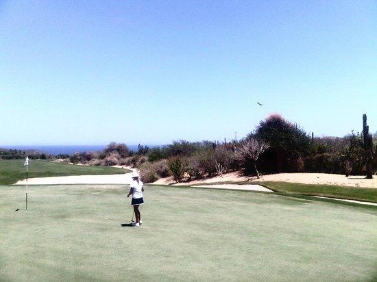 Hacienda del Mar Los Cabos: Cabo Del Sol Desert course on property.