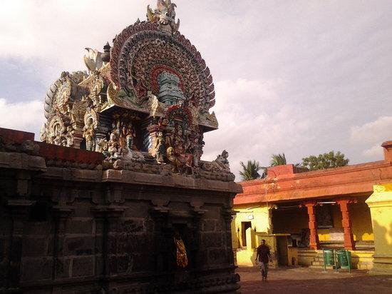Chidambaram, India: Thillai Kali Amman Temple prakaram-Murali visit