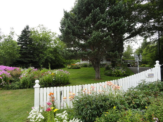 Innisfree Bed and Breakfast: The flowers around their property were exquisite!
