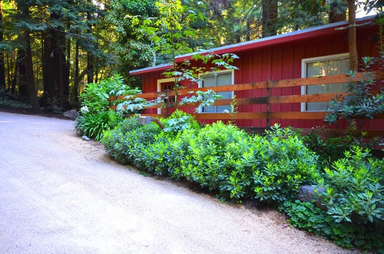 Glen Oaks Big Sur: Another view of the cabin
