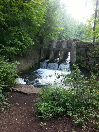Charlie Major Nature Trail: the falls