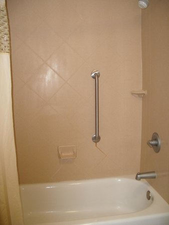 Hampton Inn & Suites Little Rock - Downtown: bathtub and shower