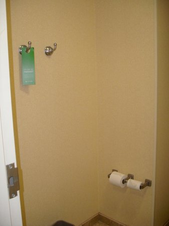Hampton Inn & Suites Little Rock - Downtown: three hooks inside the bathroom