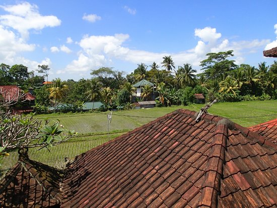 Kori Bali Inn: View from upstairs room
