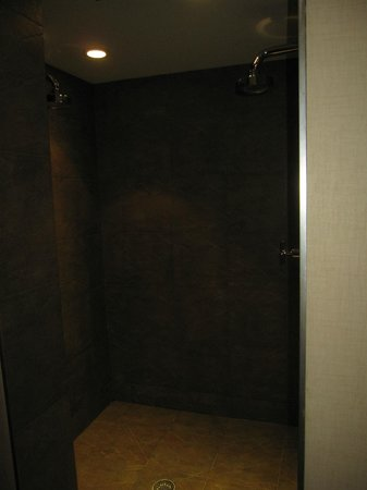 The Woodlands Resort, An Ascend Collection Hotel: double rainspout shower