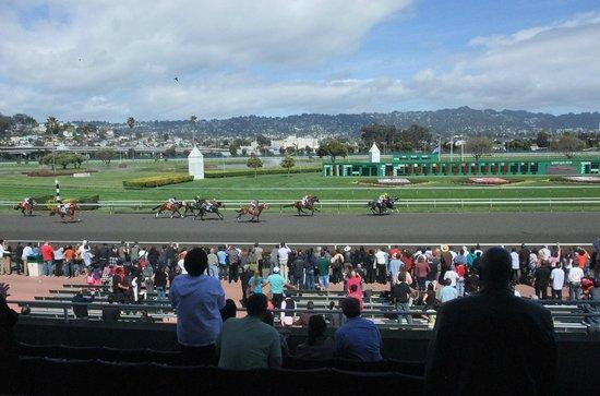 Golden Gate Fields: Horse racing