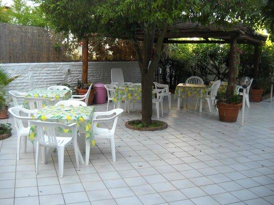 Hotel Casa Mazzella: giardino