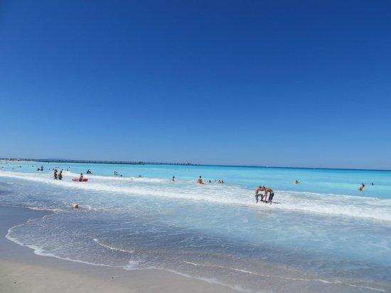 Borgo Verde: Strand in de buurt van, zeer wit, doet tropisch aan