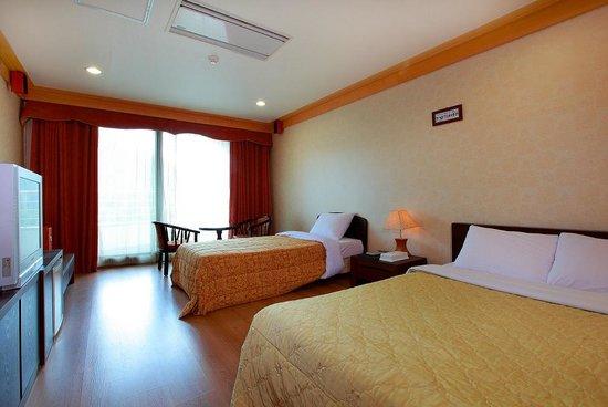 Gapyeong Seorak Tourist Hotel: Standard twin
