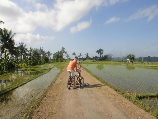 Mandala Desa: In the middle of ricefields, near the villa