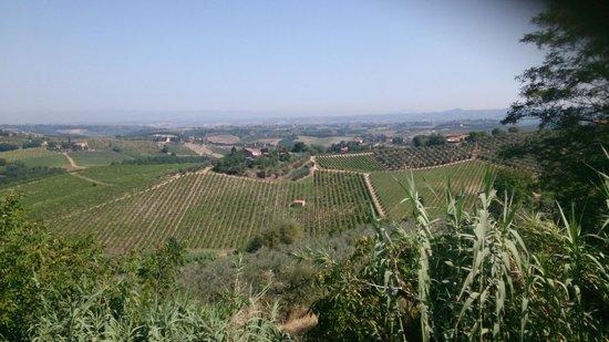 Agriturismo Santa Croce: Vista desade el mirador