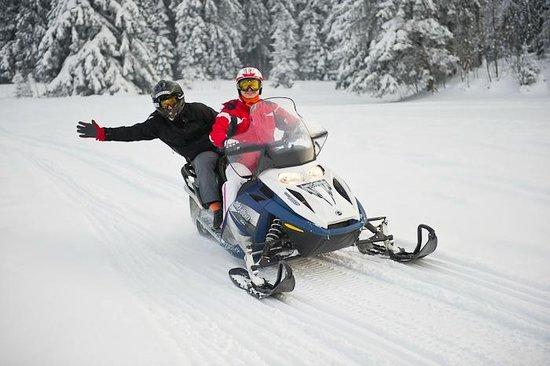 Snowdoo Adventure Zakopane