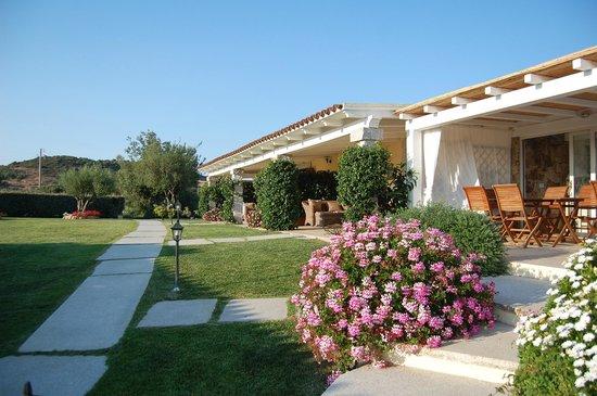 Cento Ulivi: Hotel & grounds 3