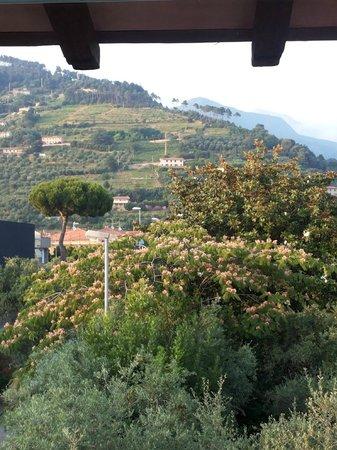 Villa a Case Rosse : Vista dalla camera