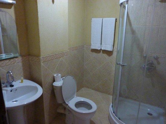 Arusha Tourist Inn: bagno