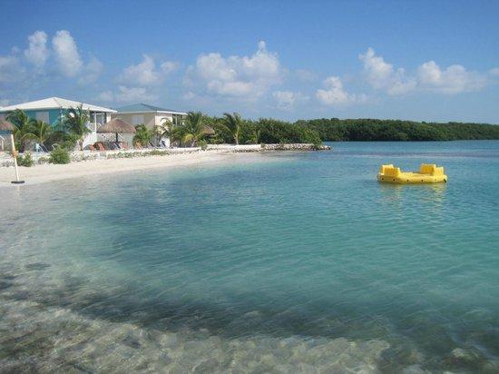 Royal Palm Island Resort: la plage de l'hotel