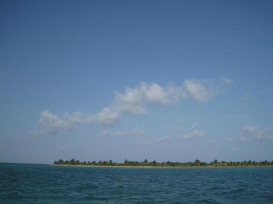 Royal Palm Island Resort: hotel