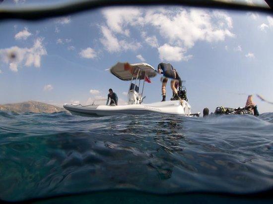 ScubAndros: Surfacing the Shark Fin reef