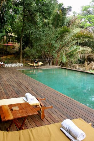 Rhino River Camp : Swimmingpool in the middle of tropical wood