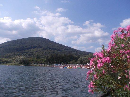 lago di vico - oleandri