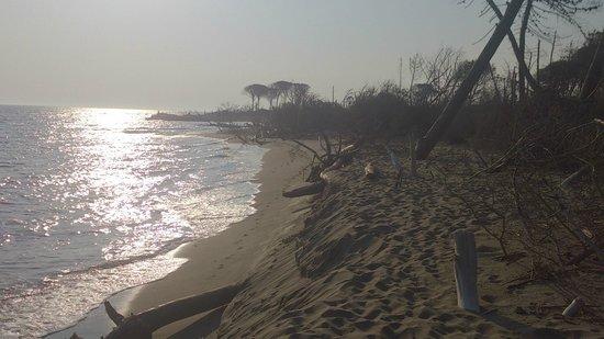 Podere Monte Corno: La spiaggia a 10 km
