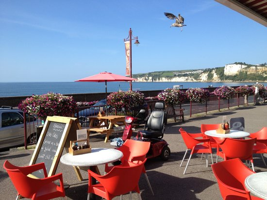The galley cafe': The galley cafe view