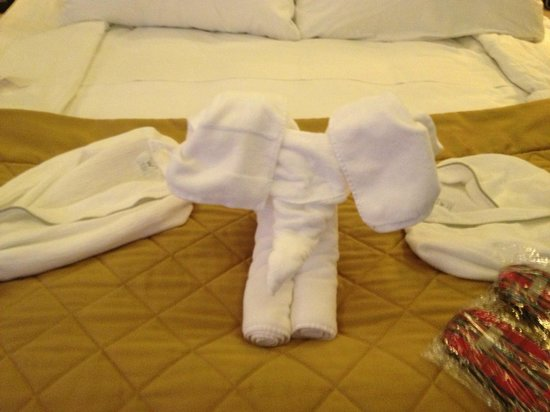 W London Leicester Square: cute towel animal on bed the maids left