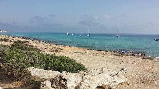 Beach Club 10.7: VISTA DAL BAR