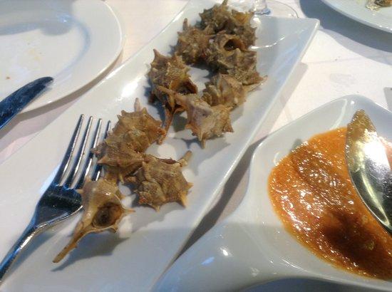 Los Cabezudos : Caracoles del Mar
