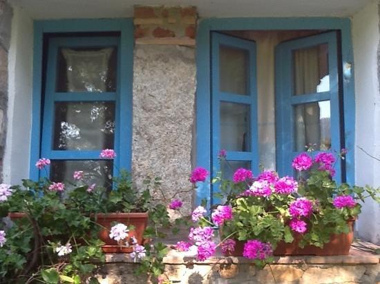 Agriturismo Casteddu : Gerani alle finestre