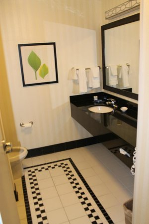 Fairfield Inn & Suites Fort Lauderdale Airport & Cruise Port: Tub/shower on left.