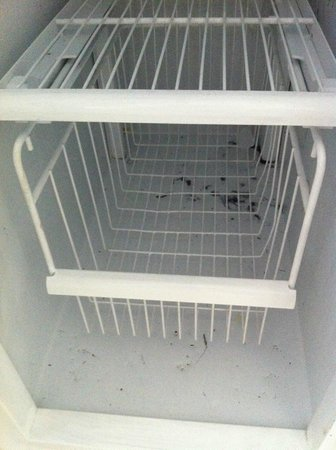 Sapphire Beach Club Resort: Mold in refrigerator and freezer