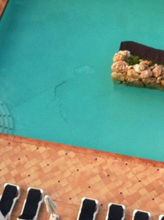 Sapphire Beach Club Resort: The pool, notice the hole and crack on the pool floor