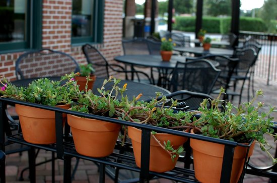 Cappy's Pizzeria: Outside Seating