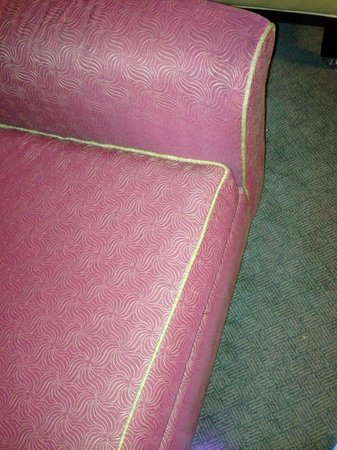 Embassy Suites by Hilton Secaucus - Meadowlands : Worn sofa