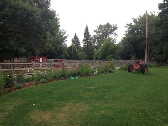 Lyons Farmette : flower garden