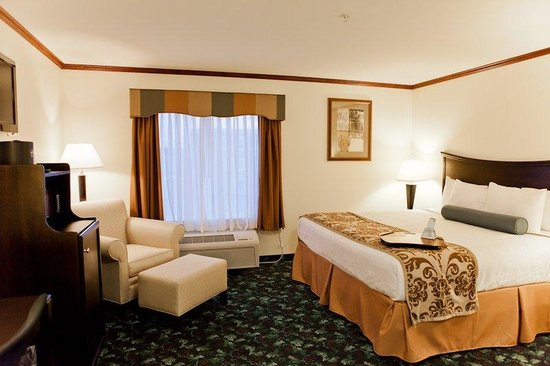 Executive Inn - Park Avenue Hotel: King Guest Room