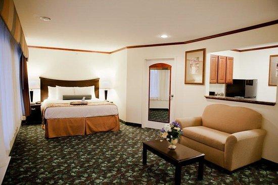 Executive Inn - Park Avenue Hotel : Executive Suite