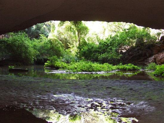 Bioma Ecotur