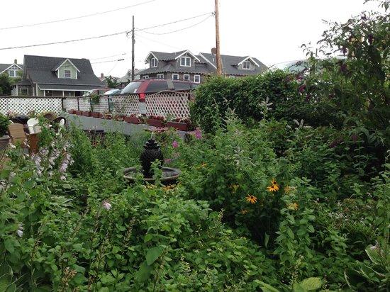 Martha's Vineyard Surfside Motel: Garden at Surfside
