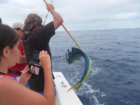 Tikehau Ninamu Resort: Mahi mahi pescato con Chris