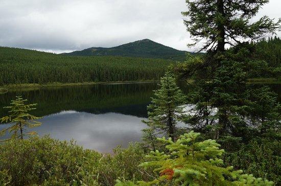 Le Refuge du Prospecteur: Lake, mountains and forests