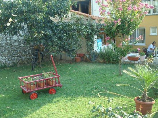 Pansion Rose: giardino