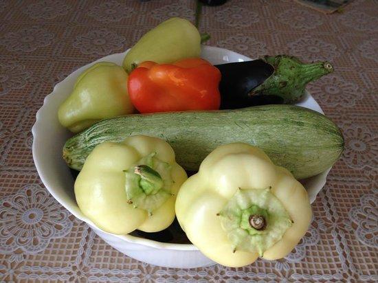 Apartments Dubrovnik Cavtat : Fresh vegetables from the garden