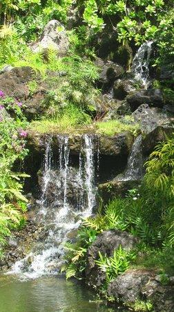 Na Aina Kai Botanical Gardens: Manmade, but beautiful!