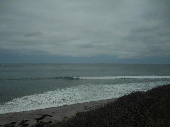 Neptune's Net : More surfers