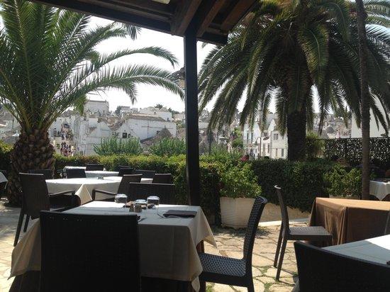 Il Guercio di Puglia: Panorama