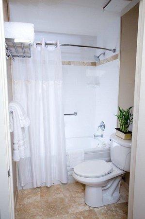 The Zen Hotel: Bathroom